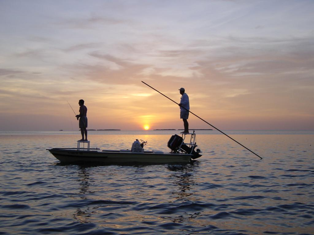 Fly fishing guide tampa bay fly fishing guide tampa bay for Fly fishing florida